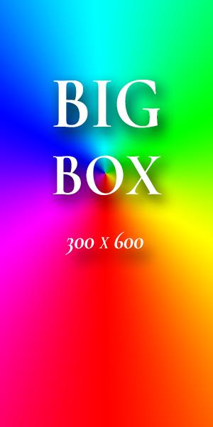 300x600_ad_example
