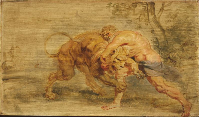 Oil painting sketch with traces of red chalk on a cradled panel. The artist is Peter Paul Rubens, a Flemish master. The painting is of Herakles engaged in battle with the vicious Nemean lion.