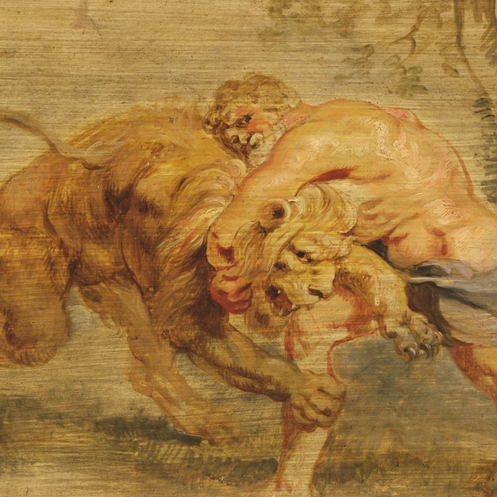Oil painting sketch with traces of red chalk on a cradled panel. The artist is Peter Paul Rubens, a Flemish master. The painting is of Herakles engaged in battle with the vicious Nemean lion. This is a cropped, detail view focusing on the faces of both Hercules and the Nemean Lion.