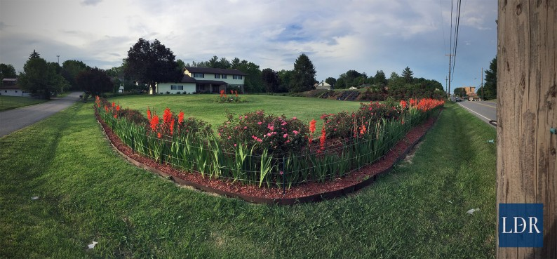 A panoramic view of Dr. Almatari's place taken from the light pole at the corner of Main and Ely Streets in Jonesville.
